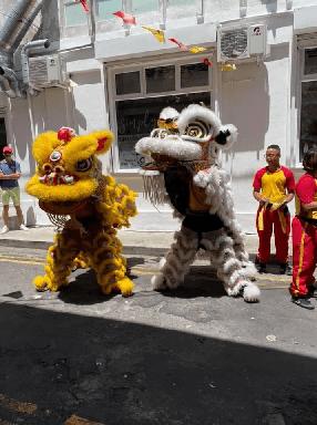 Fête des Lanternes et visite de Chinatown avec l'UFE Ile Maurice